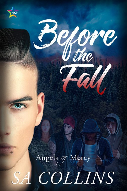Book Cover: Before the Fall by S.A. Collins